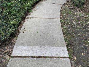 Walkway Repair